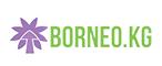 Логотип хостинговой компании Borneo.kg