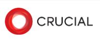 Логотип хостинговой компании Crucial