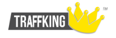 Логотип хостинговой компании Traffking.ru